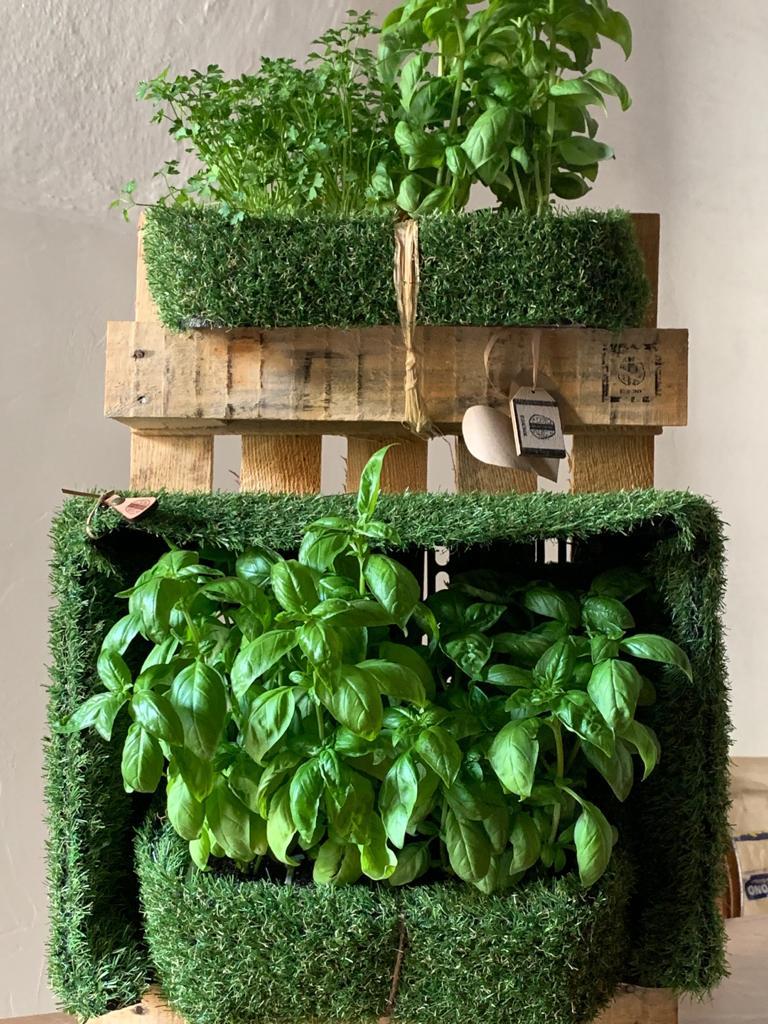 EsionWall - Vertical Seed Walls - Food Wall6