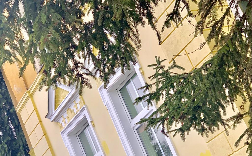 EsionSilenceProperty - Yellow Palace House - Exterior - Front View - Dutch Angle
